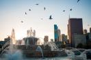 Chicago October 2012_DSC9645
