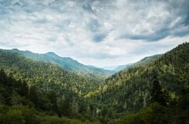 2014-9-8 Smoky Mountains_DSC4222