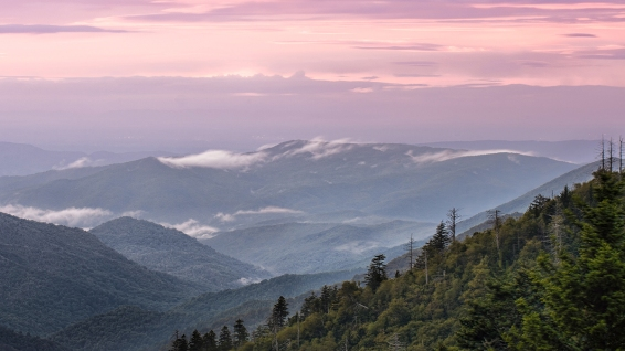 2014-9-8 Smoky Mountains_DSC4555