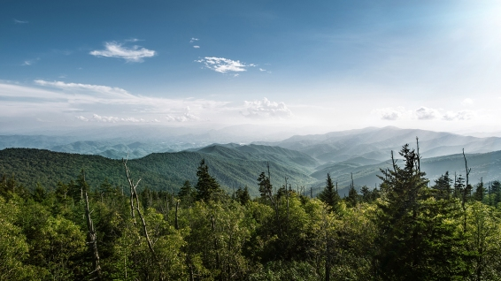 2014-9-8 Smoky Mountains_DSC4764